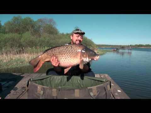 загородная рыбалка видео