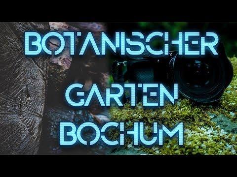 Ausflug in Botanischen Garten (Vlog) + Fotos