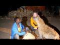 Ethiopia: Harar & Dire Dawa