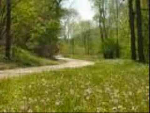 Country Road- James Taylor