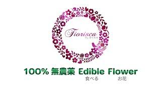 日本のセレブに話題!100%無農薬エディブルフラワー(食べるお花)
