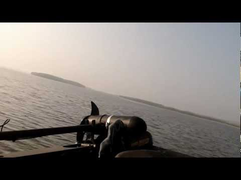 Bass Boat Shallow Water Hole Shot Stratos 295 Pro Elite