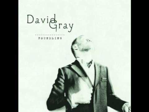 Gray, David - Fixative