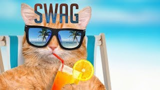 "Logic - Icy ft. Gucci Mane (Instrumental) Type Beat - ""Swag"" | Cool Hip-Hop Trap Beat"