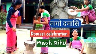 Domasi celebration    Magh Bihu    Rajakhungur vlog