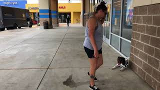 "German Shorthaired Pointer ""Zeus"" | Remarkable Transformation | San Antonio Dog Trainers"