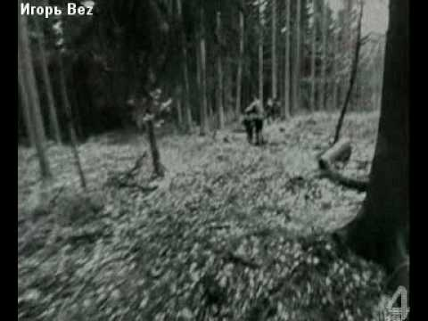 Король и Шут - Охотник