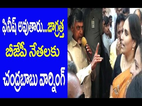 Chandrababu Warns BJP Woman Leader | AP Politics | Special Status| Great Telangana TV