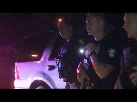 Massive melee breaks out between crowd, Fla. cops