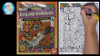 Mindware Color Counts Animals Coloring Book Review Giraffe