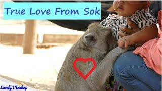 Million Meaning Of Amazing Sok Heart. Wonderful Best Relationship Sok Monkey & Baby. Lovely Monkey.