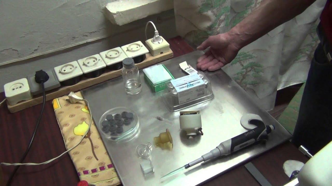 sperma-krolikov-kupit
