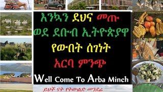 Dana Ethiopia Drama Last Part 88