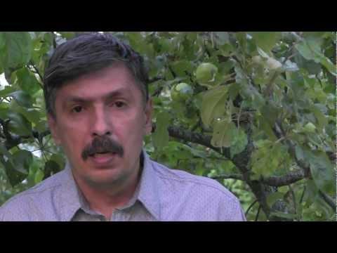 """Эльдар Тагиев:"""" Как быть, когда оратор сбился?"""""""