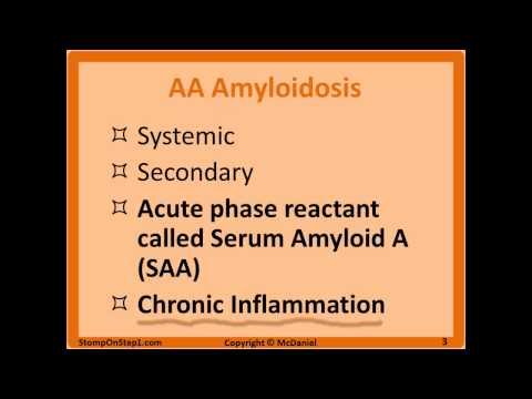 Amyloidosis, Apple Green Birefringence, Cardiac amyloidosis, Transthyretin congo red stain