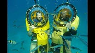 Oahu , Hawaii Underwater Scooter diving adventure 1/7/2019