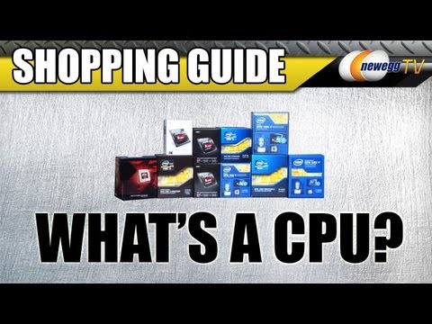 What's a CPU? Newegg TV's Desktop Processor Tutorial and Shopping Guide