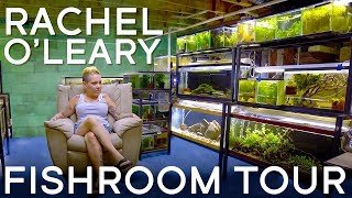 Touring Rachel O'Leary's Fishroom in 4K
