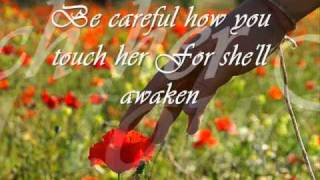 download lagu Wildflower W/ Lyrics gratis