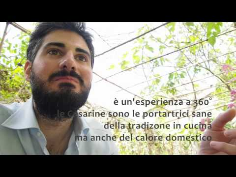 TRAME DI LUNIGIANA | 25.05.2014 | Gita a Fosdinovo | Luca Sancini