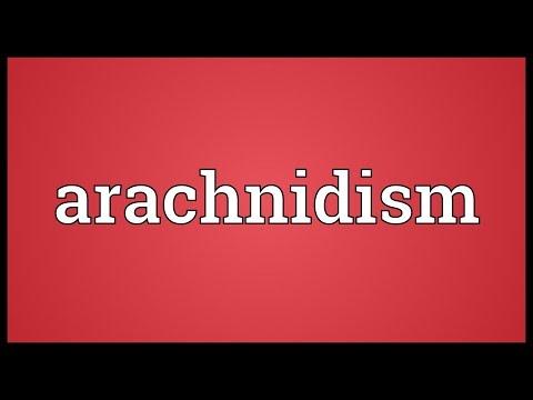 Header of arachnidism