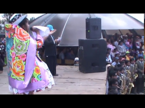 CANCION VIRGEN DE COCHARCAS