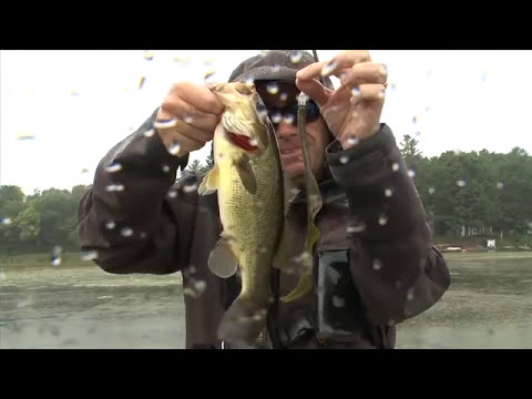Throwing 10 Inch Worms for Big Bass in the Slop - Facts of Fishing THE SHOW