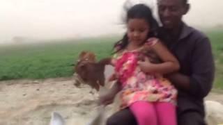 سبا في مزارع قوز بدر ريفي المتمة /ابريل ٢٠١٤