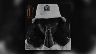 Small X (Shayfeen) - YDF (Official Audio)