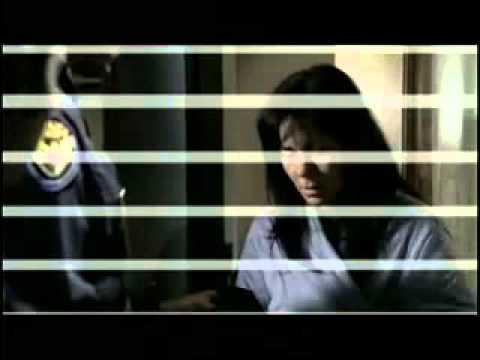 Emmett Michigan Consumer Credit Counseling call 1-800-254-4100