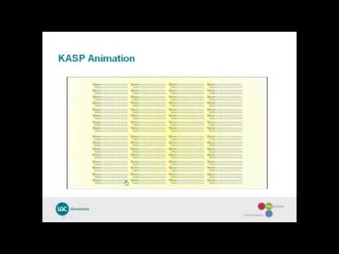 Introducing the Zebrafish genotyping library -- powered by KASP™