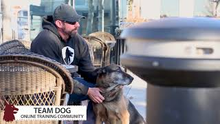 Dallas Video Production | Frozen Fire Films | Dog Training Video