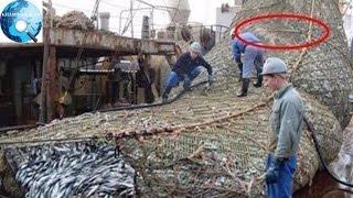 Tưởng đánh được mẻ cá lớn, ngư dân kinh ngạc phát hiện ra thứ này bên trong