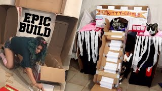 MAKING AN EPIC BOX FORT CASTLE FOR THE CATS!