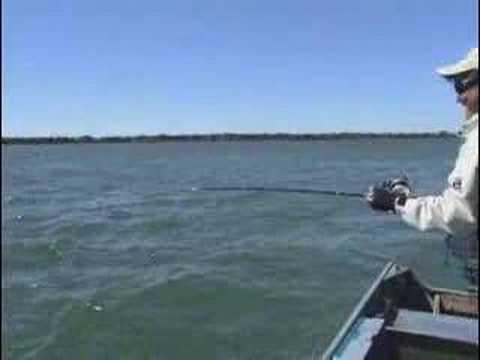 Ayrton pesca - Programa de pesca - Piapara - Veja mais! www.videospesca.com.br