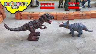TRICERATOPS VS TREX Dinosaur Fight Tournament! Skyheart's battle event dinosaur toys for kids