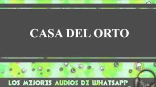 Casa Del Orto - Conversaciones De Whatsapp - Los Mejores Audios Y Videos Whatsapp