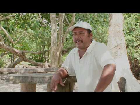 Honduras: Heredarán la tierra