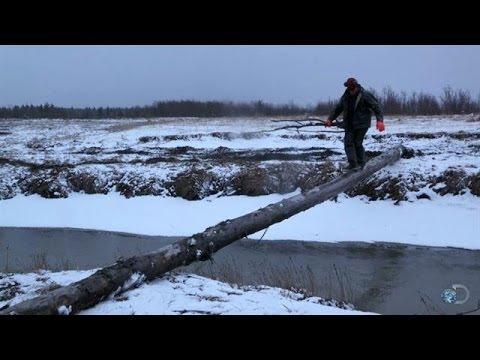 Reasons to Live in Alaska | Alaska: The Last Frontier