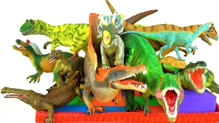 Learn Dinosaurs - Wild Animals - Prehistoric Reptiles - T rex - What's in the box? Educational