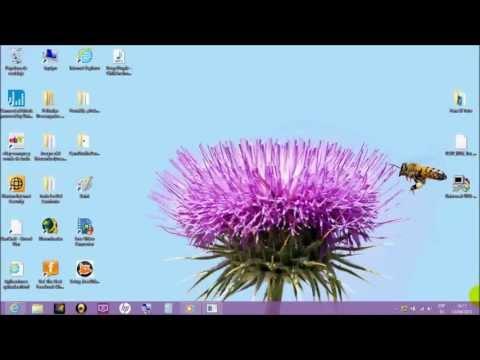 Solución De Juegos Con Bordes Negros En Windows 8