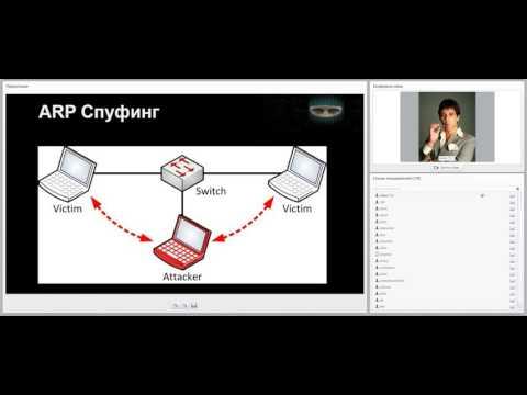SERP Parser Professional 1cracked- анализ поисковых фраз Все для различных движков и cms.