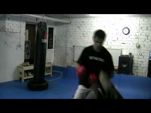 Sanshou kickboxing workout 3 Image 1