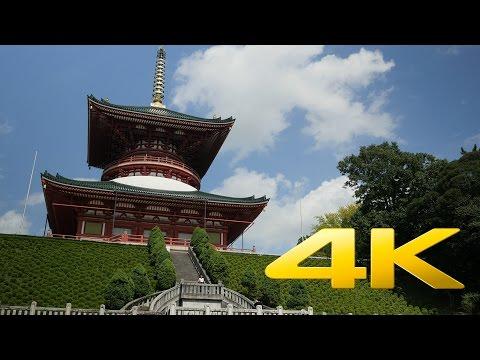 Chiba Naritasan Shinshoji Temple - 成田山 - 4K Ultra HD