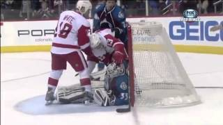 Pavel Datsyuk Goals (2013)
