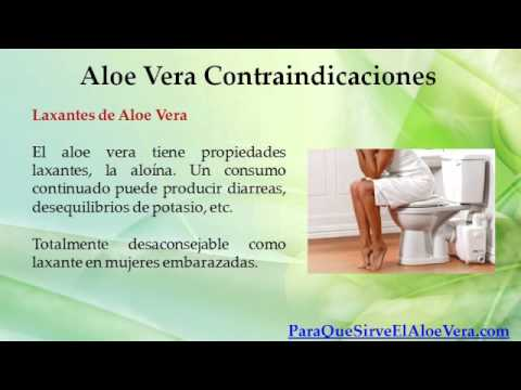 Aloe Vera Contraindicaciones - YouTube