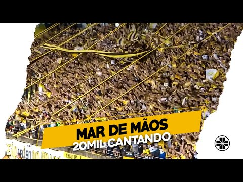 Os Tigres | Somos do time carvoeiro - Crici�ma 2 x 0 Chapecoense - Final do jogo