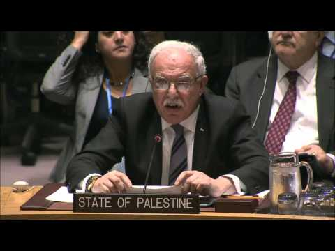 MaximsNewsNetwork: VIOLENCE in ISRAEL and PALESTINE: U.N. SECURITY COUNCIL