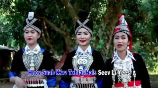 Hmoob Tsiab Peb Caug (Instrumental) by Leekong Xiong & Dalee Chang