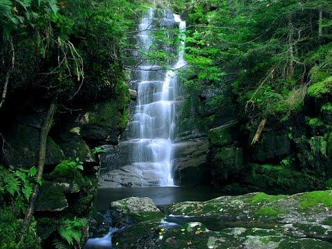 The Waterfall Hunter